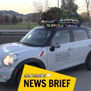 Local spreading holiday cheer with Christmas tree fundraiser
